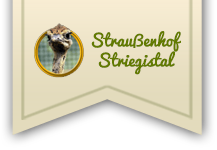 Straußenhof Striegistal